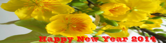 Happy new year 2014 1